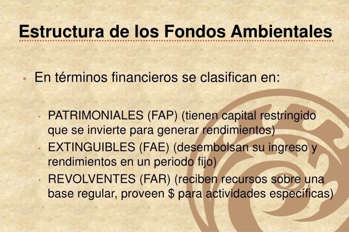 Estructura de los Fondos Ambientales
