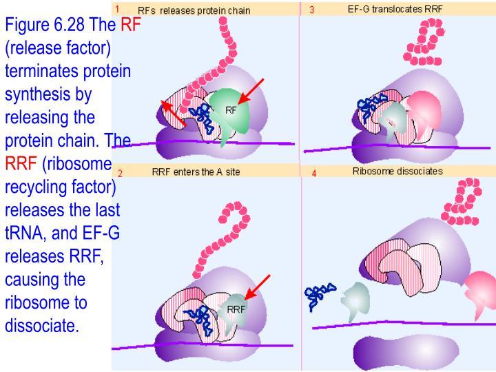 Figure 6.28 The