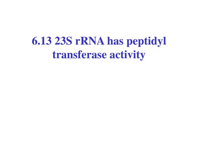 6.13 23S rRNA has peptidyl transferase activity