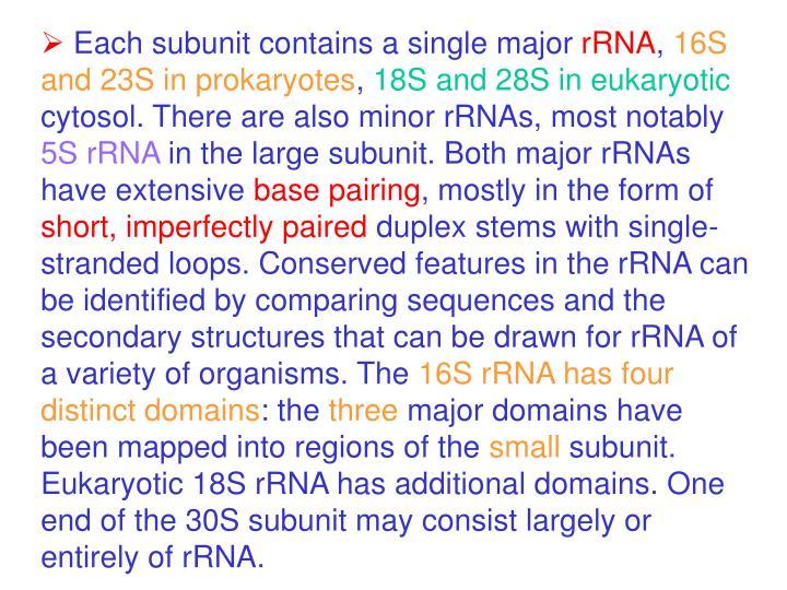 Each subunit contains a single major