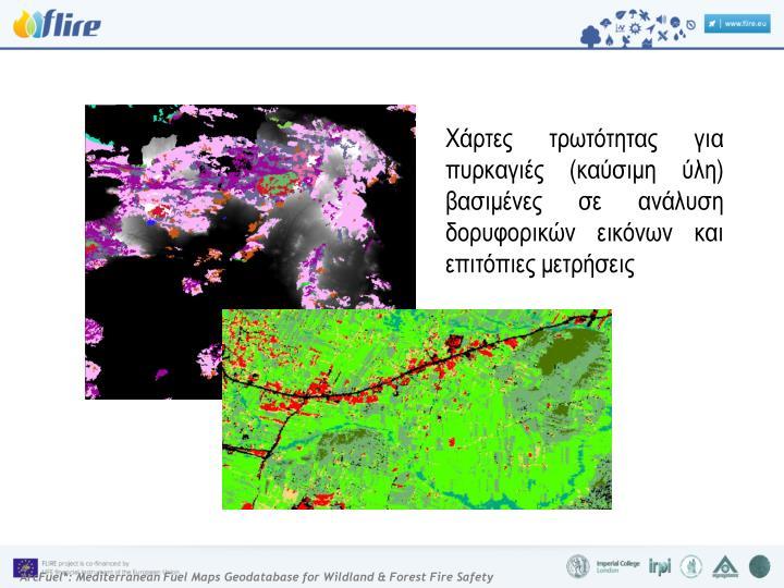 Χάρτες τρωτότητας για πυρκαγιές (καύσιμη ύλη) βασιμένες σε ανάλυση δορυφορικών εικόνων και επιτόπιες μετρήσεις