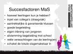 succesfactoren mas