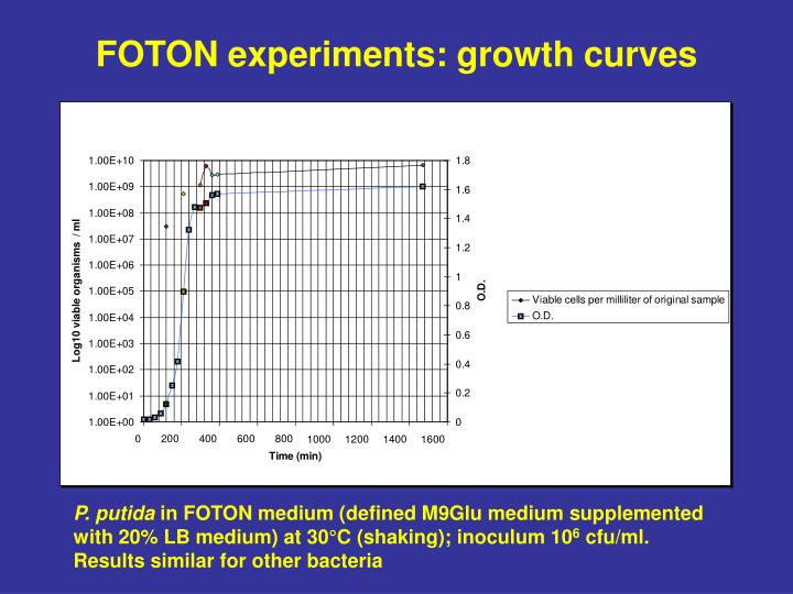 FOTON experiments: growth curves