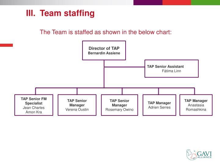Team staffing