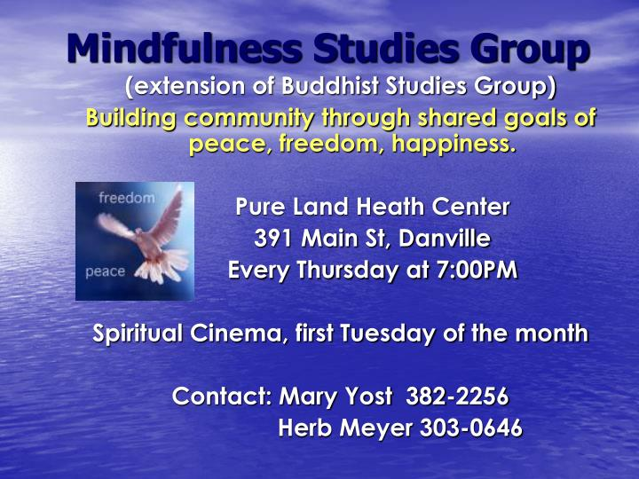 Mindfulness Studies Group