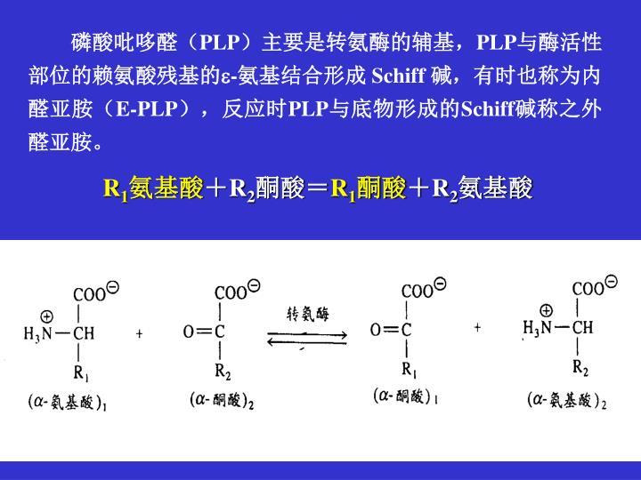 磷酸吡哆醛(