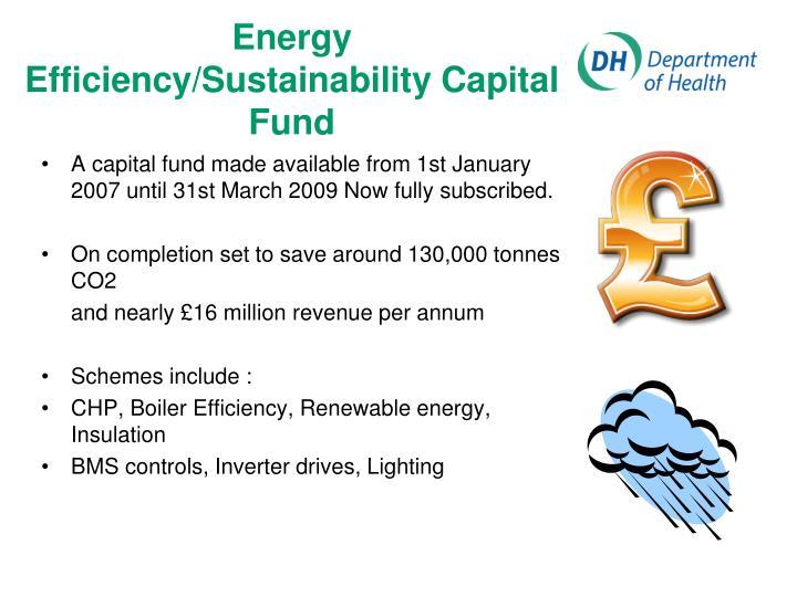 Energy Efficiency/Sustainability Capital Fund