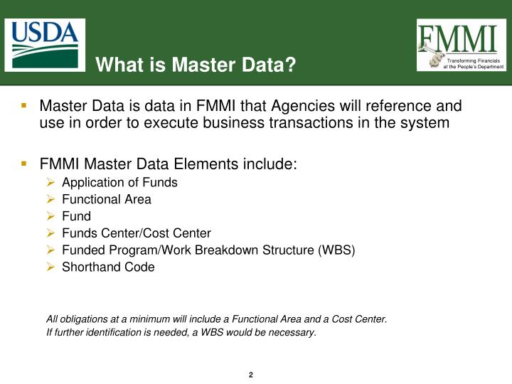 What is master data