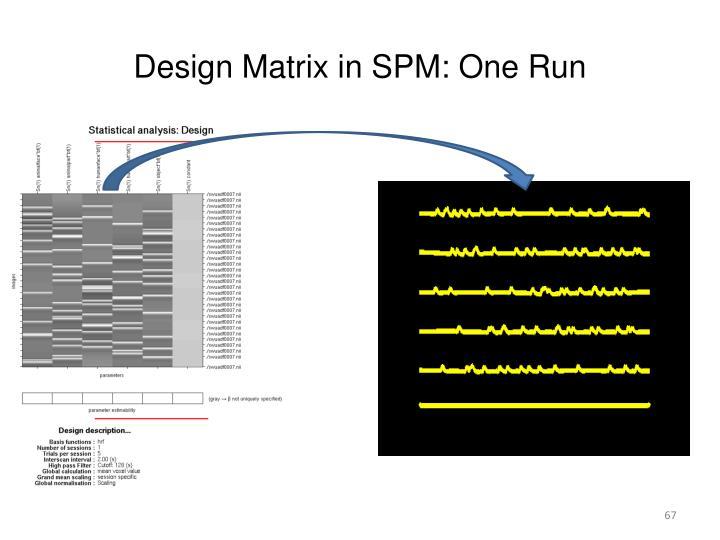 Design Matrix in SPM: One Run