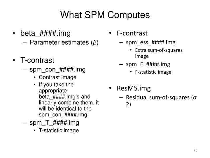 What SPM Computes