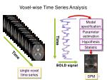 voxel wise time series analysis