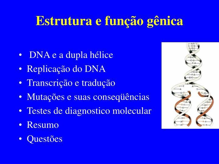 Estrutura e função gênica