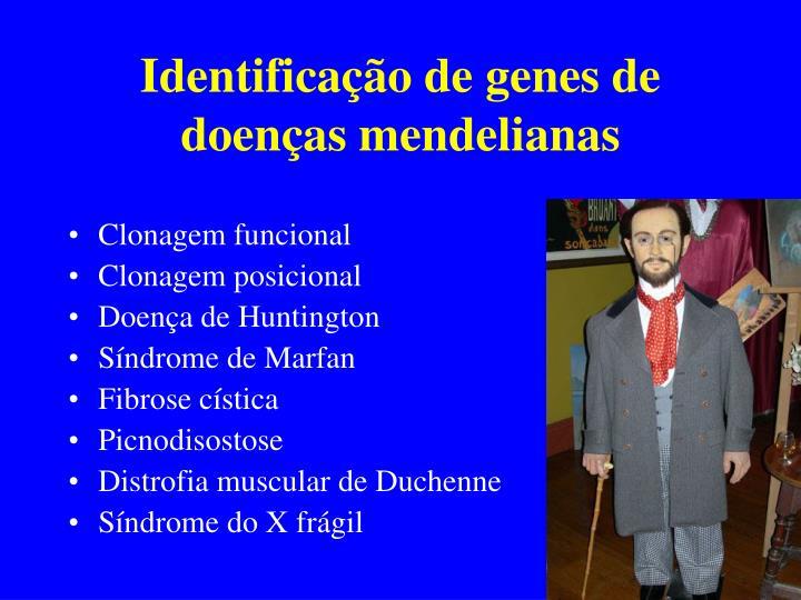 Identificação de genes de doenças mendelianas