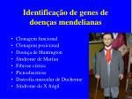 identifica o de genes de doen as mendelianas