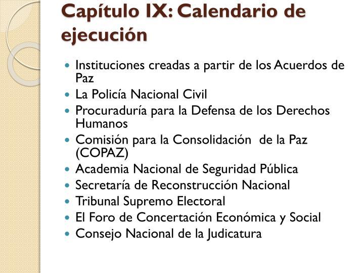 Capítulo IX: Calendario de ejecución