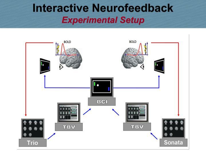 Interactive Neurofeedback
