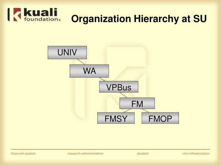 Organization Hierarchy at SU