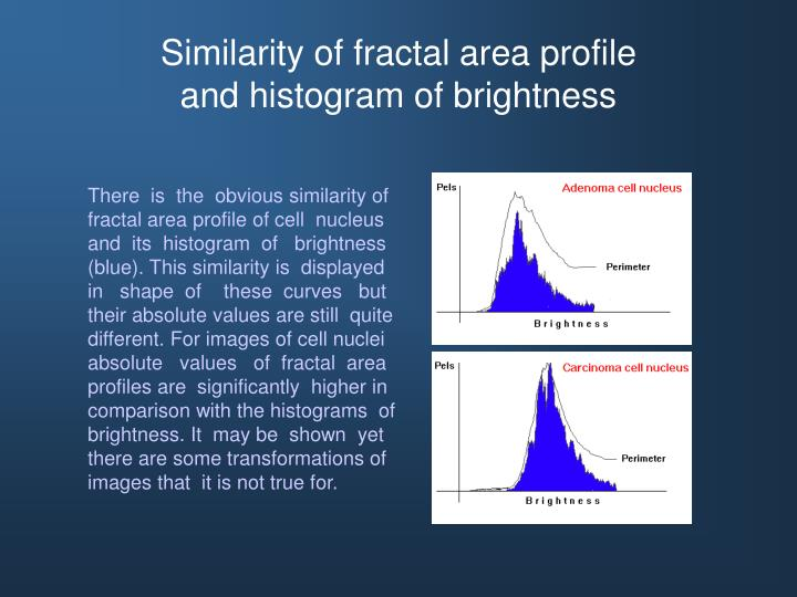 Similarity of fractal area profile