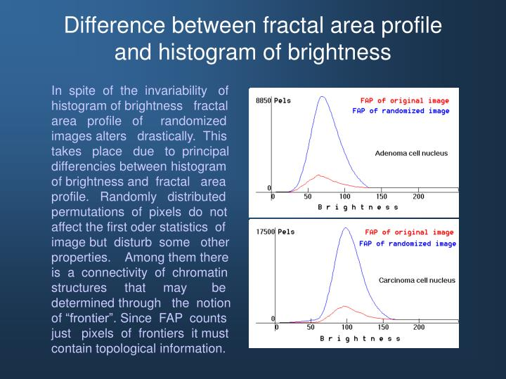 Difference between fractal area profile