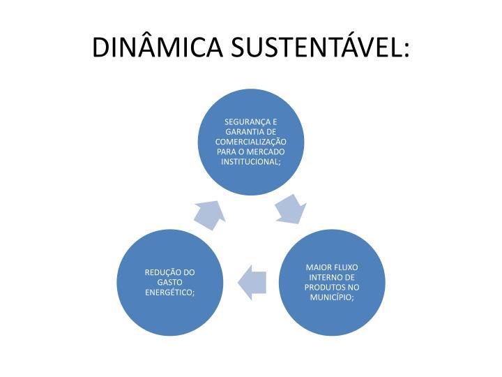 DINÂMICA SUSTENTÁVEL: