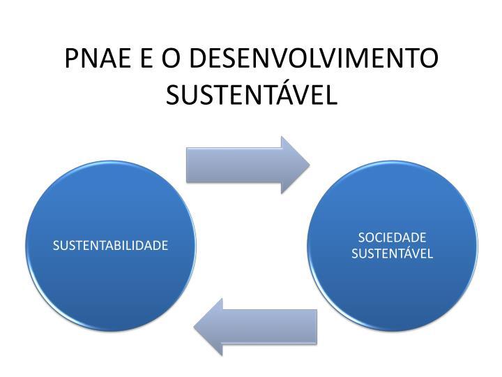 PNAE E O DESENVOLVIMENTO SUSTENTÁVEL