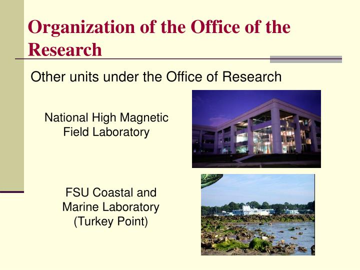 Organization of the Office of the Research