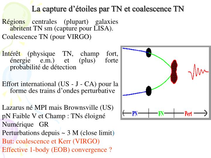 La capture d'étoiles par TN et coalescence TN