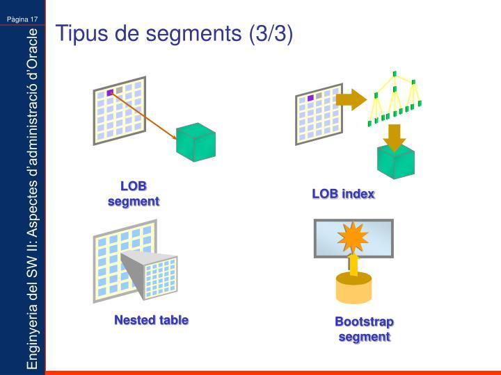 Tipus de segments (3/3)