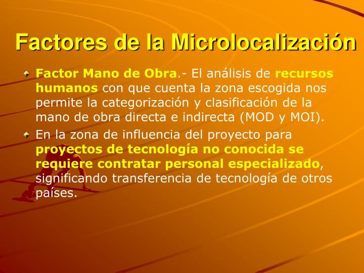 Factores de la Microlocalización