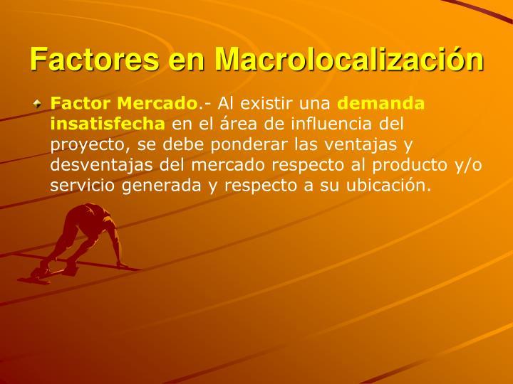 Factores en Macrolocalización
