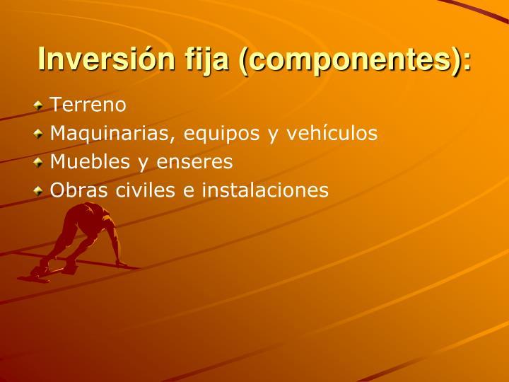 Inversión fija (componentes):