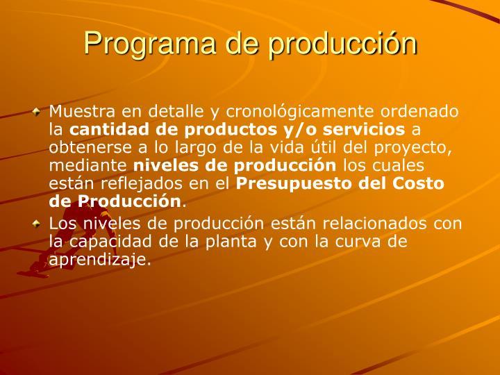 Programa de producción