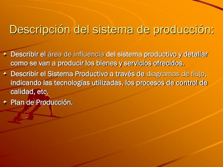 Descripción del sistema de producción: