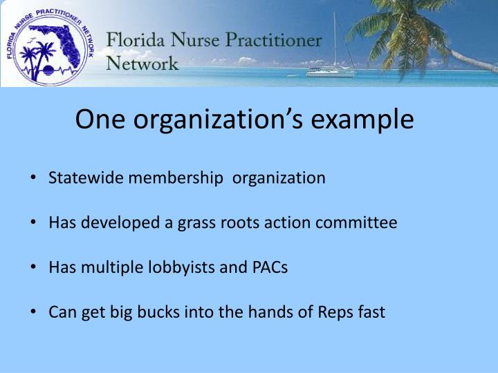 One organization's example