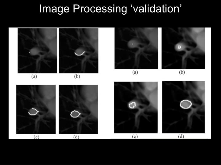 Image Processing 'validation'