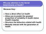 why pay attention to the social determinants of health