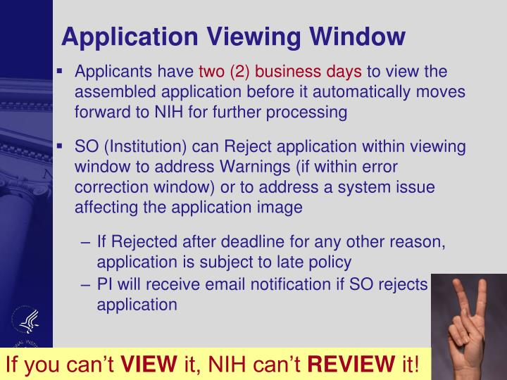 Application Viewing Window