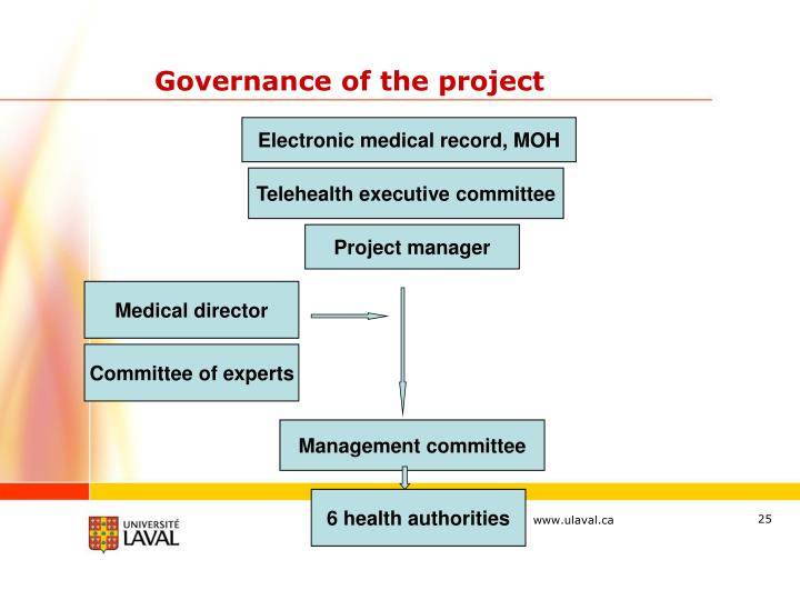 Governance of the project