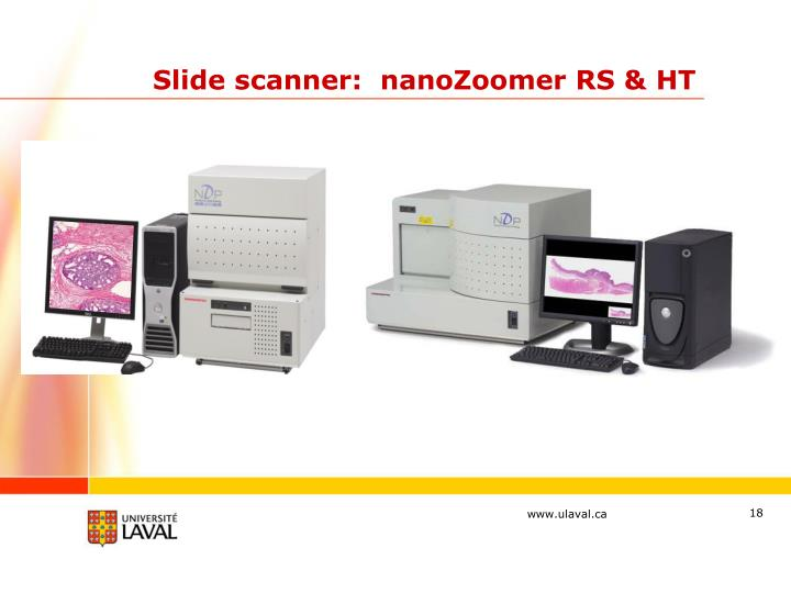 Slide scanner:  nanoZoomer RS & HT