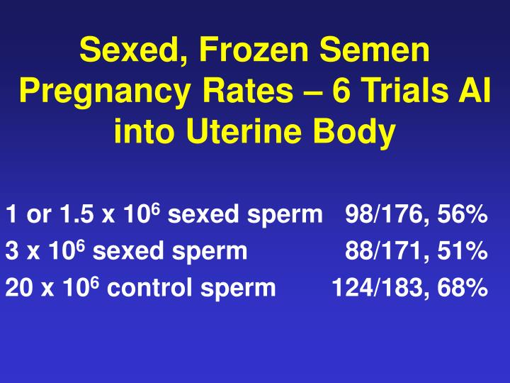 Sexed, Frozen Semen Pregnancy Rates – 6 Trials AI into Uterine Body