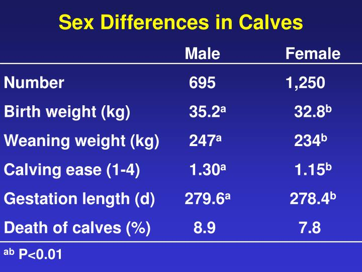 Sex Differences in Calves