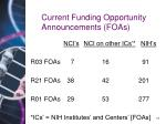 current funding opportunity announcements foas