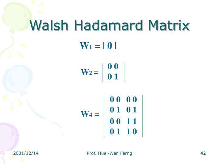 Walsh Hadamard Matrix