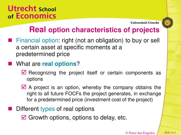 Real option characteristics of projects