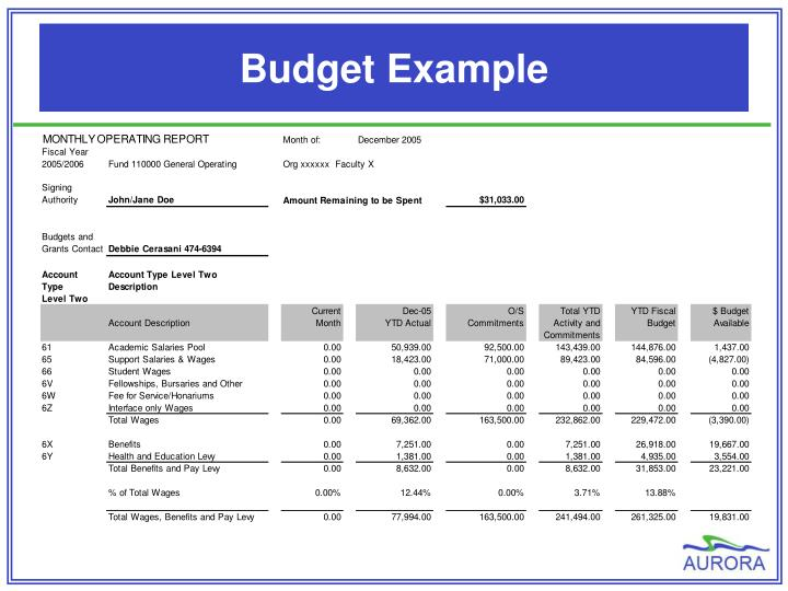 Budget Example