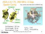 aaa b 0 175 350 mhz 2 gap spoke cavity