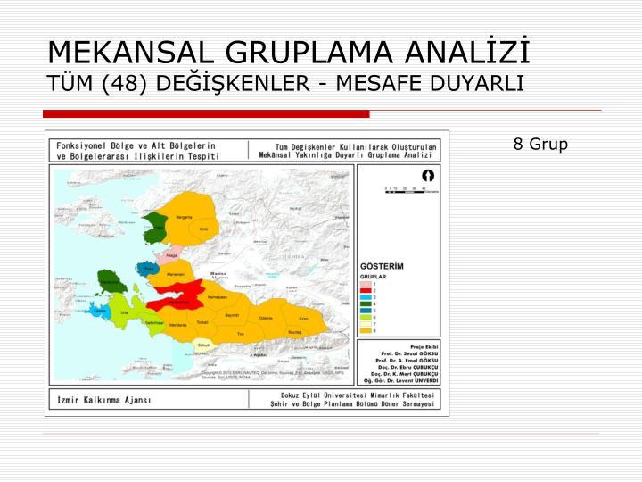 MEKANSAL GRUPLAMA ANALİZİ