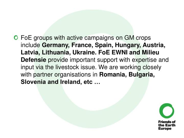 FoE groups with active campaigns on GM crops include