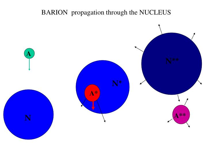 BARION  propagation through the NUCLEUS
