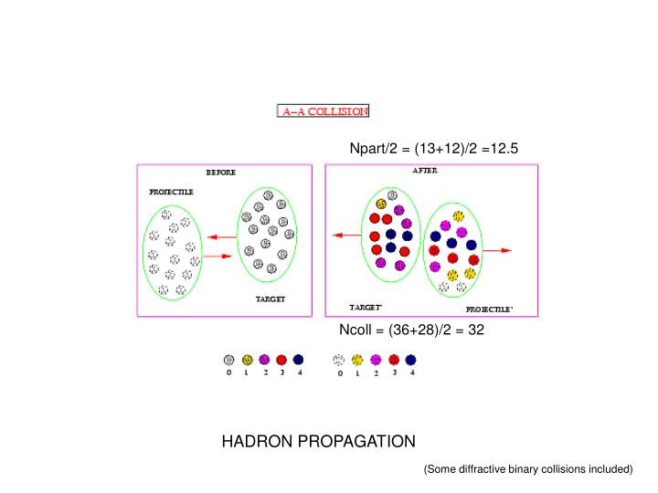 Npart/2 = (13+12)/2 =12.5